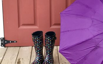 Get Your Rain Boots and Umbrella! It's THAT Kind of Day