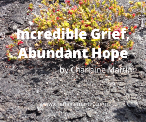 Incredible Grief, Abundant Hope