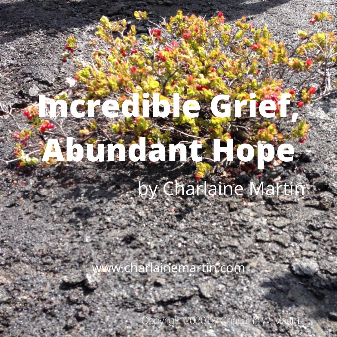 Incredible Grief, Abundant Hope